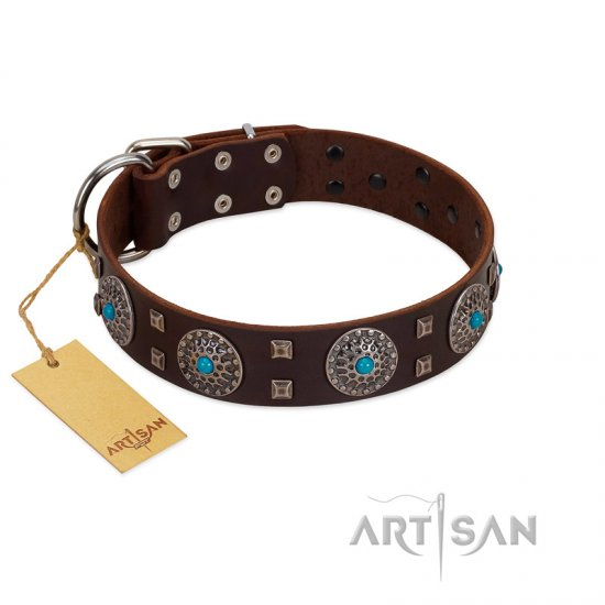 """Hypnotic Stones"" FDT Artisan Brown Leather Newfoundland Collar with Chrome Plated Brooches and Square Studs"
