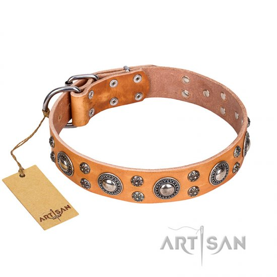 'Extra Sparkle' FDT Artisan Handcrafted Newfoundland Tan Leather Dog Collar