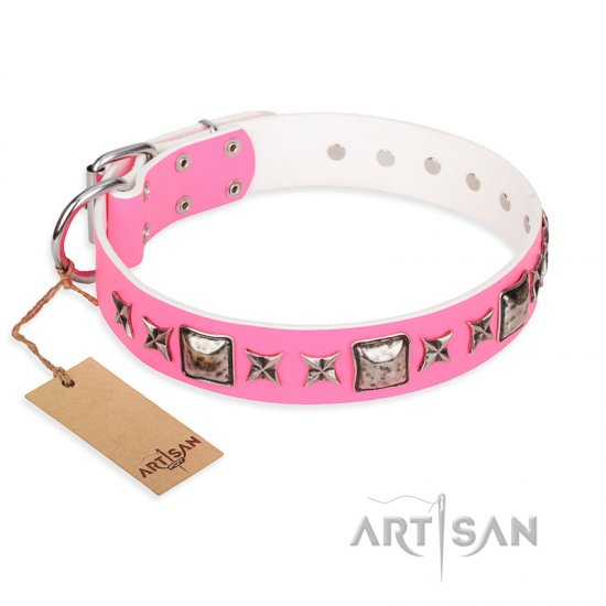 """Lady in Pink"" FDT Artisan Extravagant Leather Newfoundland Collar with Studs"