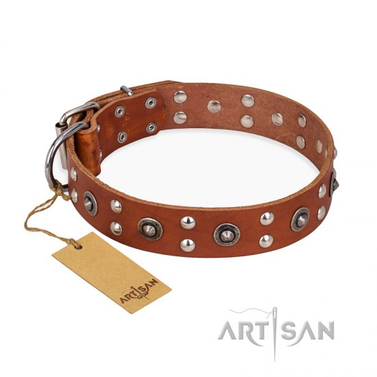 """Silver Elegance"" FDT Artisan Decorated Leather Newfoundland Collar with Old Silver-Like Plated Studs and Cones"
