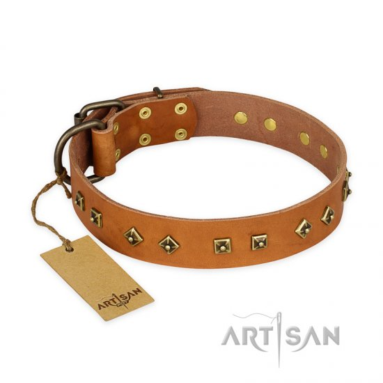 """Autumn Story"" FDT Artisan Leather Newfoundland Collar with Old Bronze Look Studs"