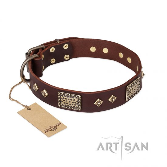 """Loving Owner"" FDT Artisan Decorated Leather Newfoundland Collar with Plates and Studs"