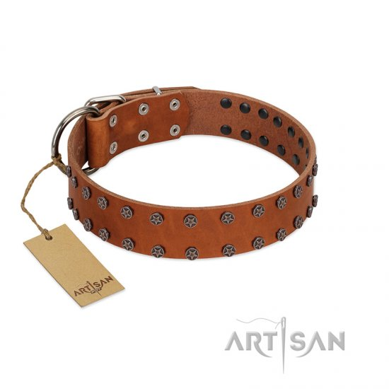 """Star Light"" Stylish FDT Artisan Tan Leather Newfoundland Collar with Silver-Like Studs"