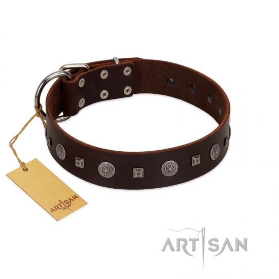 """Pure Sensation"" Exclusive FDT Artisan Brown Leather Newfoundland Collar with Fancy Brooches and Studs"