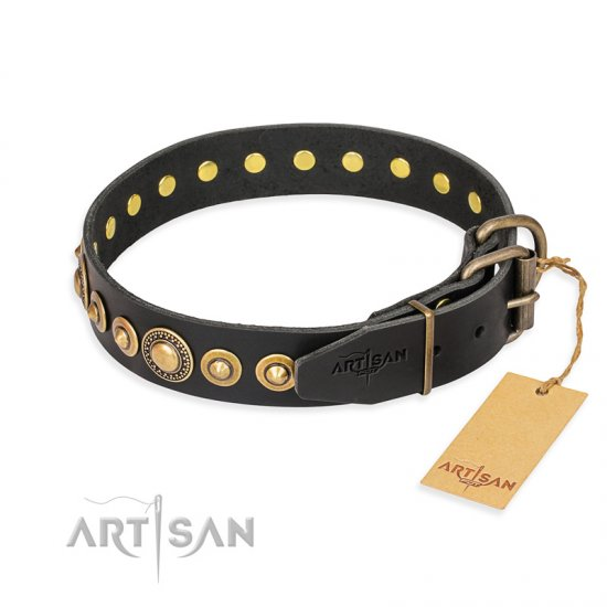"""Gold Mine"" FDT Artisan Black Leather Newfoundland Collar with Amazing Bronze-Plated Round Studs"