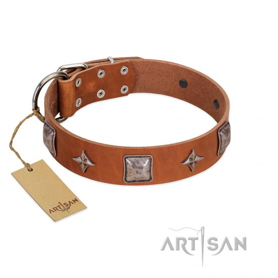 """Lucky Star"" FDT Artisan Tan Leather Newfoundland Collar with Silver-Like Embellishments"