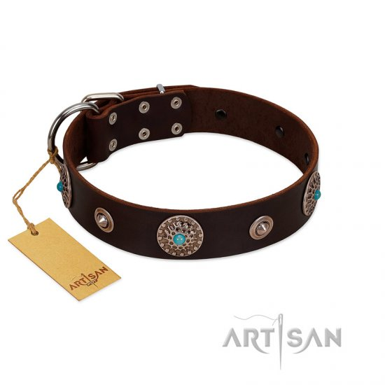 """Magic Stones"" FDT Artisan Brown Leather Newfoundland Collar with Chrome Plated Brooches and Studs"