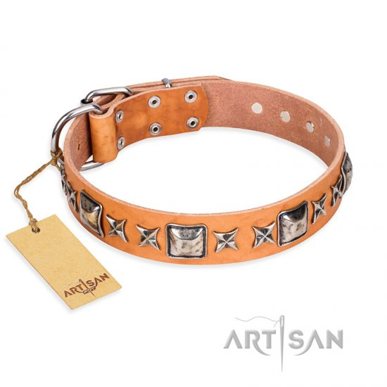 """Glamour Finery"" FDT Artisan Female Newfoundland collar of natural leather with stylish old-looking circles"