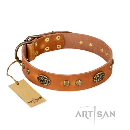 """Sun Beams"" FDT Artisan Tan Leather Newfoundland Collar with Decorations"