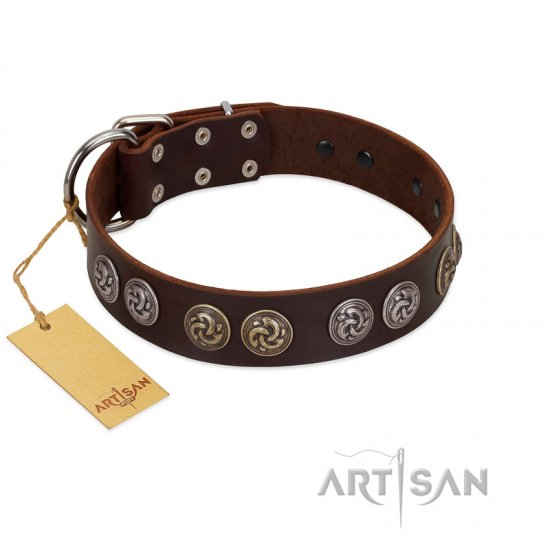 """Treasure Hunter"" FDT Artisan Brown Leather Newfoundland Collar with Old-Bronze-like and Silvery Medallions"