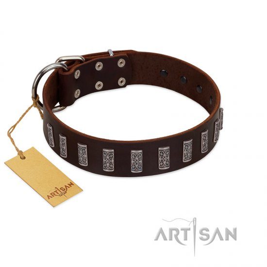 """Brown Lace"" Handmade FDT Artisan Brown Leather Newfoundland Collar for Everyday Walks"