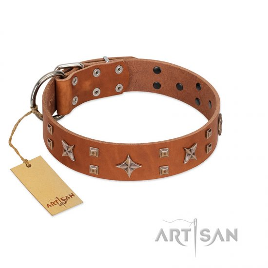 """Dreamy Gleam"" FDT Artisan Tan Leather Newfoundland Collar Adorned with Stars and Squares"