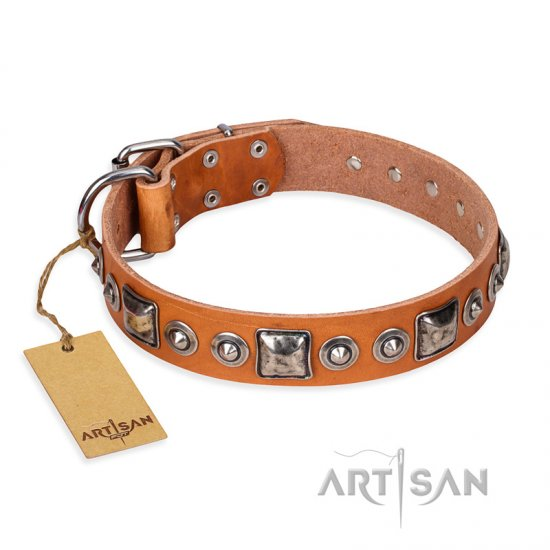 """Era of Future"" FDT Artisan Handcrafted Tan Leather Newfoundland Collar with Decorations"