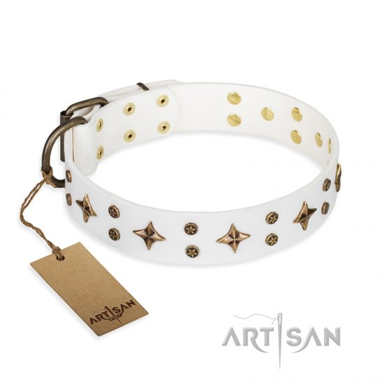 'Bright stars' FDT Artisan White Leather Newfoundland Dog Collar with Old Bronze Look Decorations - 1 1/2 inch (40 mm) wide