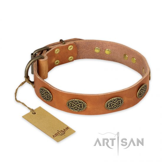 """Magic Amulet"" FDT Artisan Tan Leather Newfoundland Collar with Oval Studs"