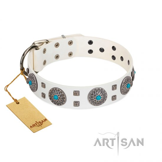 """Blue Sapphire"" Designer FDT Artisan White Leather Newfoundland Collar with Round Plates and Square Studs"