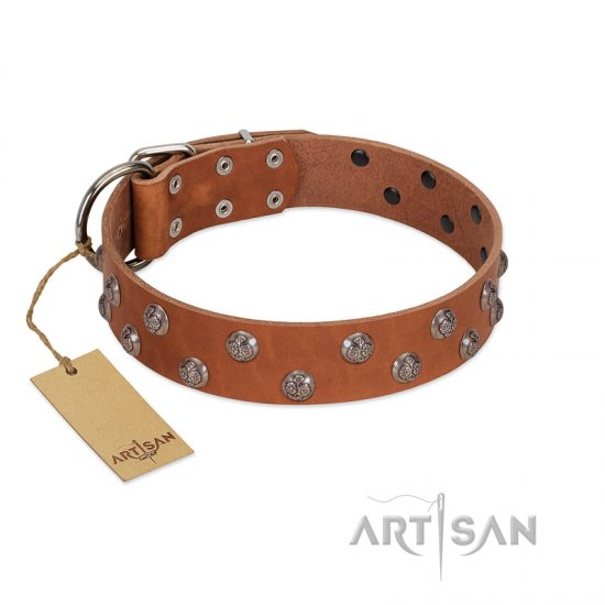 """Waltz of the Flowers"" Handmade FDT Artisan Tan Leather Newfoundland Collar with Chrome-plated Engraved Studs"