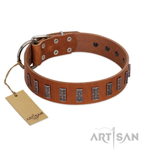 """Silver Century"" Fashionable FDT Artisan Tan Leather Newfoundland Collar with Silver-Like Plates"