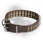 Leather Newfoundland Collar with Brass Studs and Nickel Plated Spikes