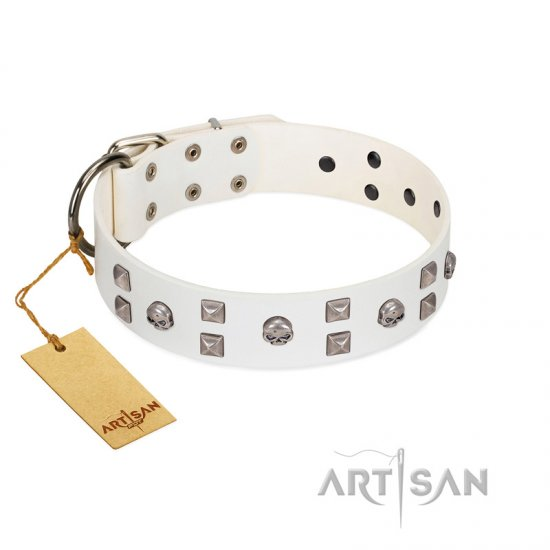 """Rock the Sky"" Durable FDT Artisan White Leather Newfoundland Collar with Chrome-plated Decorations"