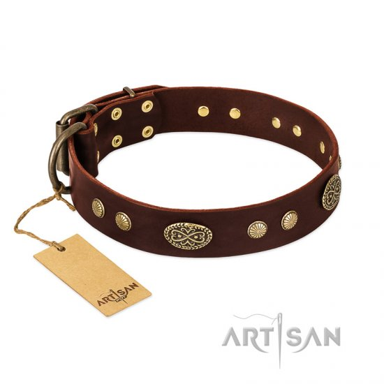 """Old-fashioned Glamor"" FDT Artisan Brown Leather Newfoundland Collar with Old Bronze Look Plates and Circles"