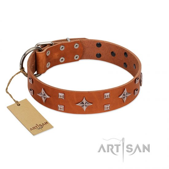 """Tawny Beauty"" FDT Artisan Tan Leather Newfoundland Collar Adorned with Stars and Tiny Squares"