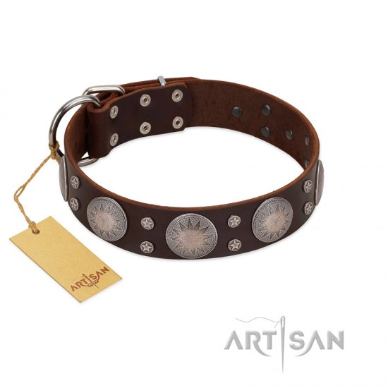 """Imperial Legate"" FDT Artisan Brown Leather Newfoundland Collar with Big Round Plates"