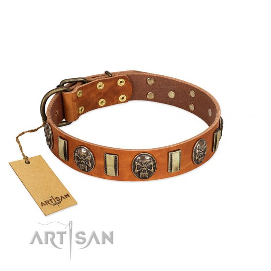 """Strike of Rock"" FDT Artisan Tan Leather Newfoundland Collar with Plates and Medallions with Skulls"