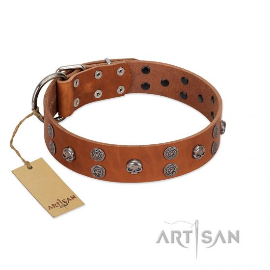"""Road Rider"" FDT Artisan Tan Leather Newfoundland Collar with Old Silver-like Skulls and Medallions"