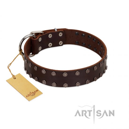 """Star Party"" Handmade FDT Artisan Brown Leather Newfoundland Collar with Silver-Like Studs"