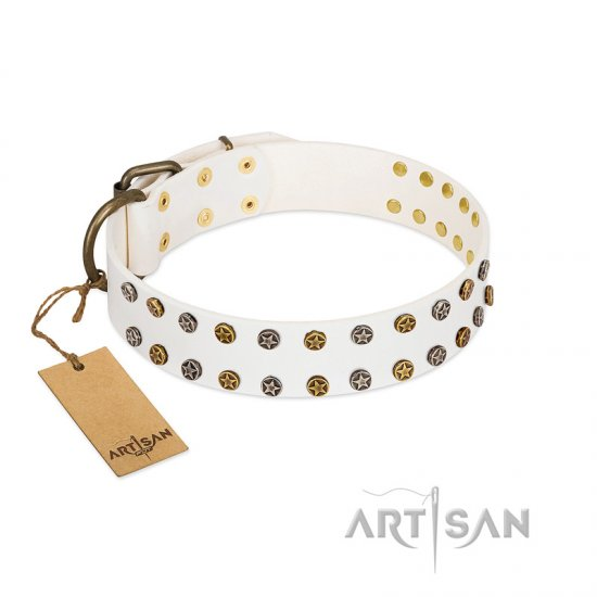 """Crystal Night"" FDT Artisan White Leather Newfoundland Collar with Two Rows of Small Studs"