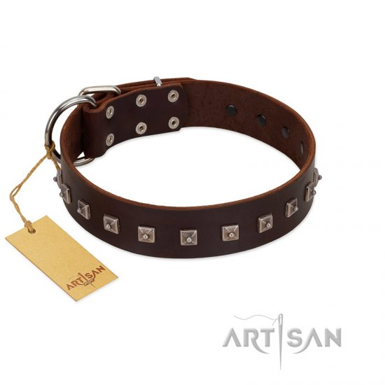 """Kingly Grace"" FDT Artisan Brown Leather Newfoundland Collar with Silver-like Dotted Studs"