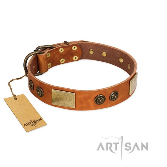 """Bronze Century"" FDT Artisan Tan Leather Newfoundland Collar with Plates and Brooches with Cool Ornament"