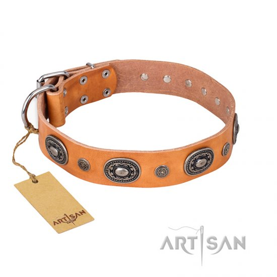 """Twinkle Twinkle"" FDT Artisan Incredible Studded Tan Leather Newfoundland Collar"