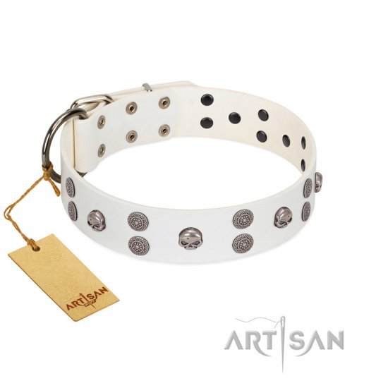 """Edgy Look"" FDT Artisan White Leather Newfoundland Collar with Silver-like Skulls"