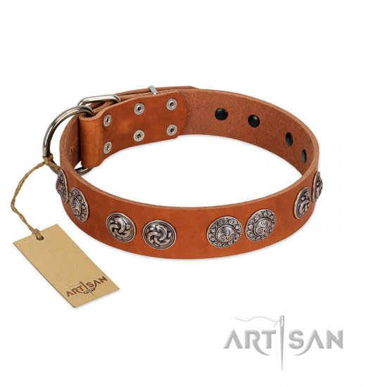 """Woofy Majesty"" FDT Artisan Tan Leather Newfoundland Collar with Round Silver-like Plates"