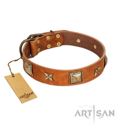 """Celtic Tunes"" FDT Artisan Tan Leather Newfoundland Collar Adorned with Stars and Squares"