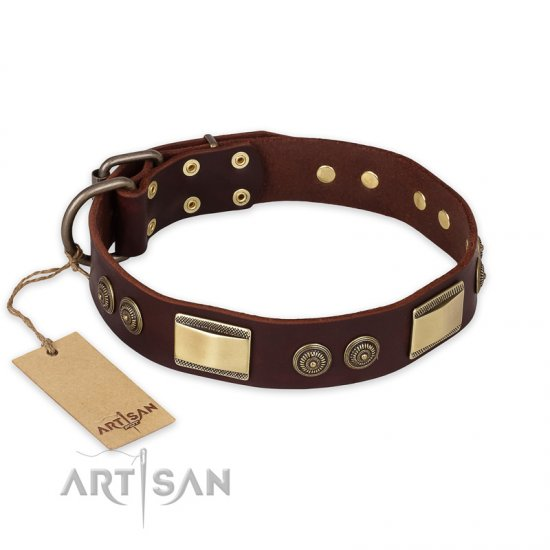 """Golden Stones"" FDT Artisan Brown Leather Newfoundland Collar with Old Bronze Look Plates and Circles"