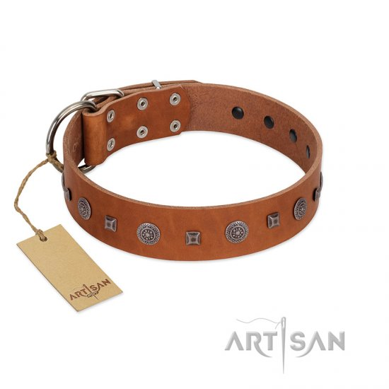 """Sweet Caramel"" Designer FDT Artisan Tan Leather Newfoundland Collar"