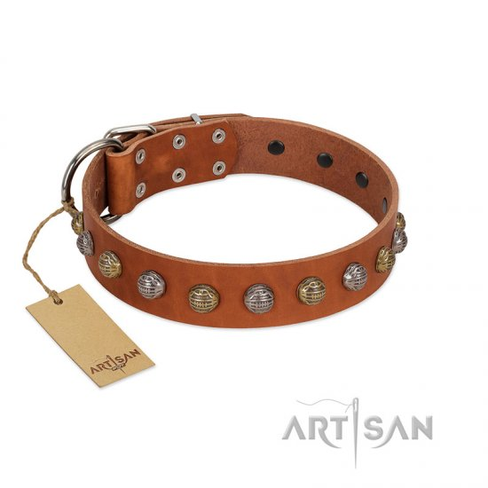 """Dogue-Vogue"" FDT Artisan Tan Leather Newfoundland Collar with Engraved Chrome-plated Studs"