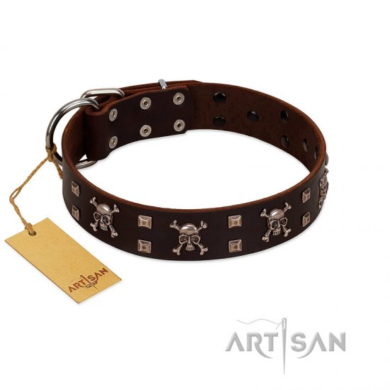 """Menacing Allure"" FDT Artisan Brown Leather Newfoundland Collar Embellished with Silvery Crossbones and Square Studs"