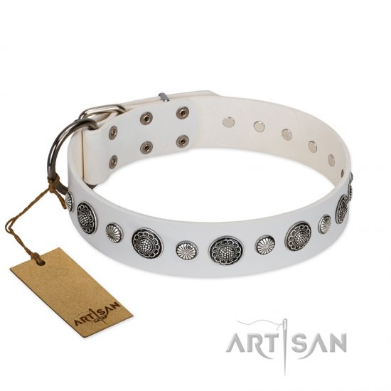 """Fluff-Stuff Beauty\"" FDT Artisan White Leather Newfoundland Collar with Silver-like Studs and Conchos"