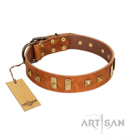 """Sand of Time"" FDT Artisan Tan Leather Newfoundland Collar with Old Bronze-like Studs and Plates"