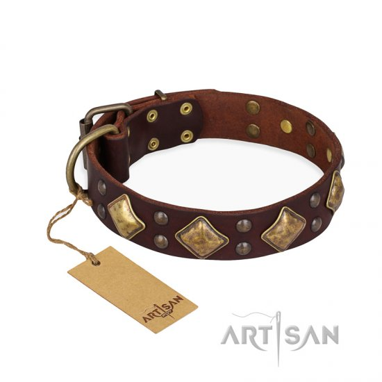 """Golden Square"" FDT Artisan Brown Leather Newfoundland Collar with Large Squares"