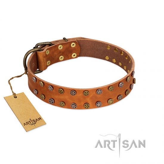 """Walk and Shine"" FDT Artisan Tan Leather Newfoundland Collar with Antiqued Studs"