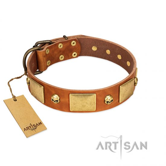 """Mutt The Daredevil"" FDT Artisan Tan Leather Newfoundland Collar with Old Bronze-like Skulls and Plates"