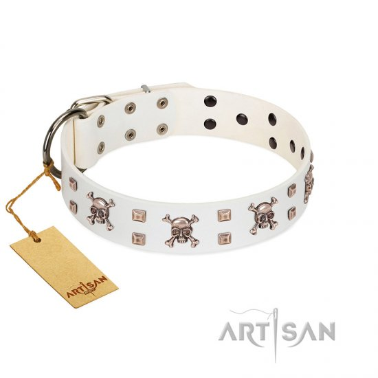 """Skull Island"" Premium Quality FDT Artisan White Designer Newfoundland Collar with Crossbones and Studs"