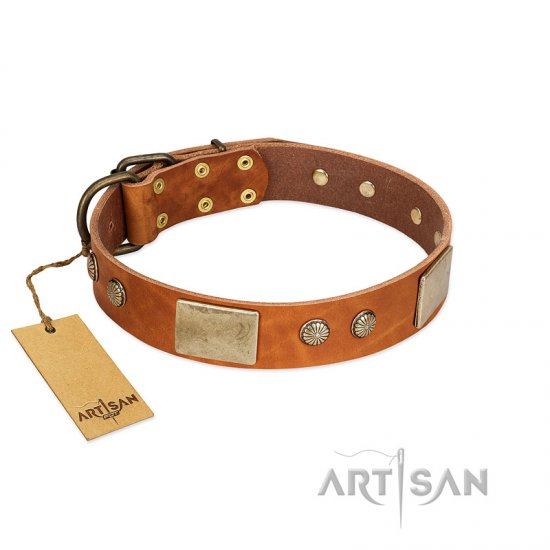 """Ancient Treasures"" FDT Artisan Tan Leather Newfoundland Collar with Antiqued Plates and Studs"