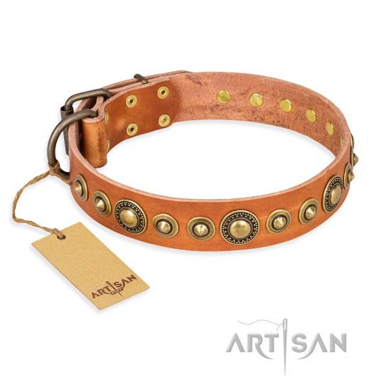 """Feast of Luxury"" FDT Artisan Tan Leather Newfoundland Collar with Old Bronze Look Circles"