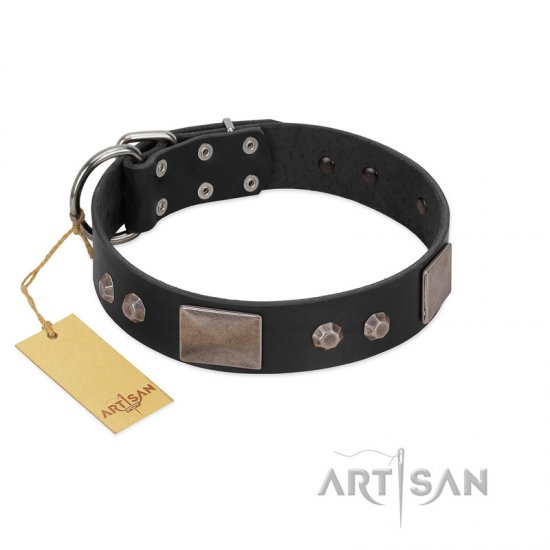 """Square Stars"" Modern FDT Artisan Black Leather Newfoundland Collar with Square Plates and Studs"